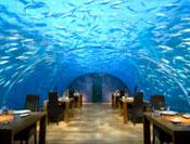 Onder water dineren
